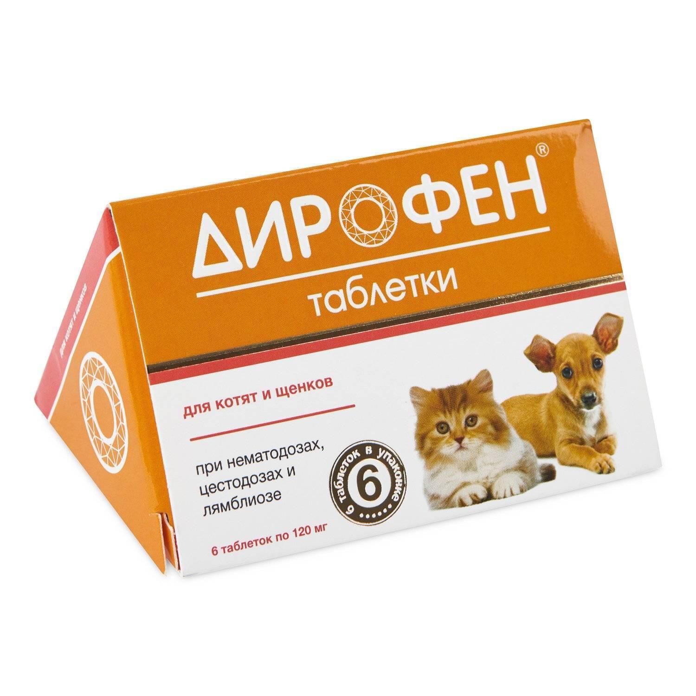 Таблетки от глистов для кошек и котят дирофен: инструкция по применению, форма выпуска, цены