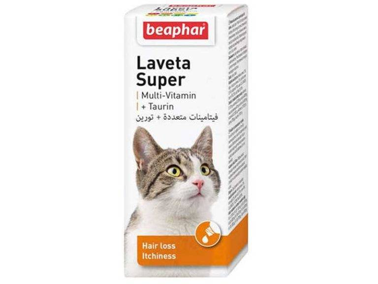 Витамины для британских кошек от выпадения шерсти. витамины от выпадения шерсти кошек