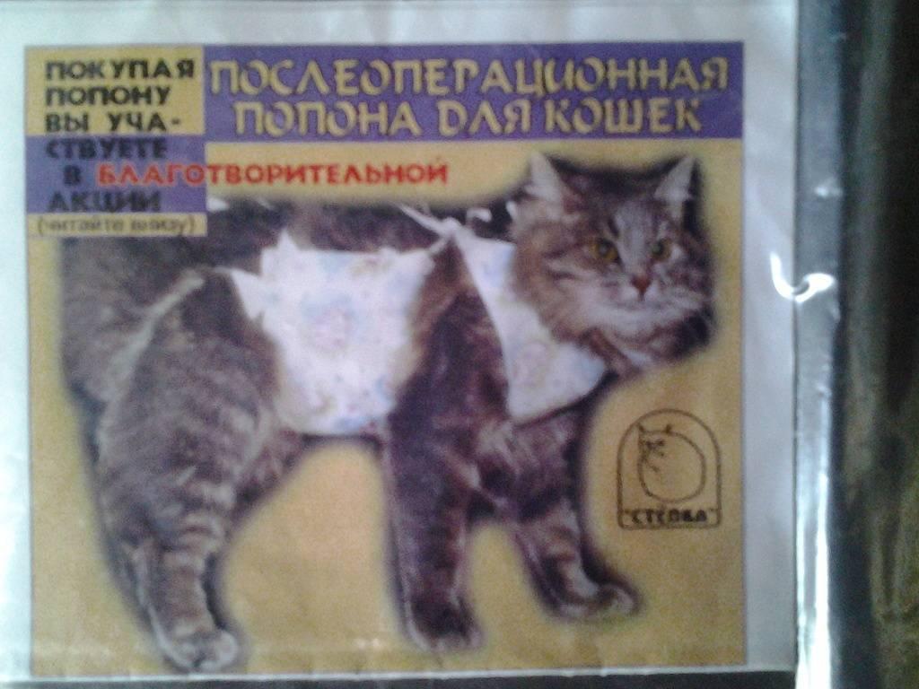 Как сделать попону для кошки своими руками: освещаем вопрос