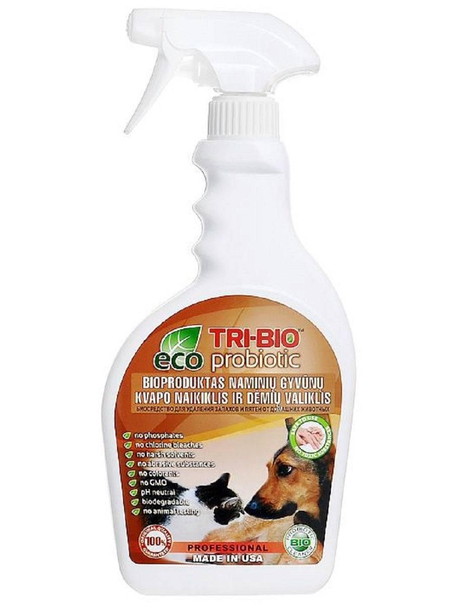 Как вывести запах кошачьей мочи: проверенные средства как вывести запах кошачьей мочи: проверенные средства