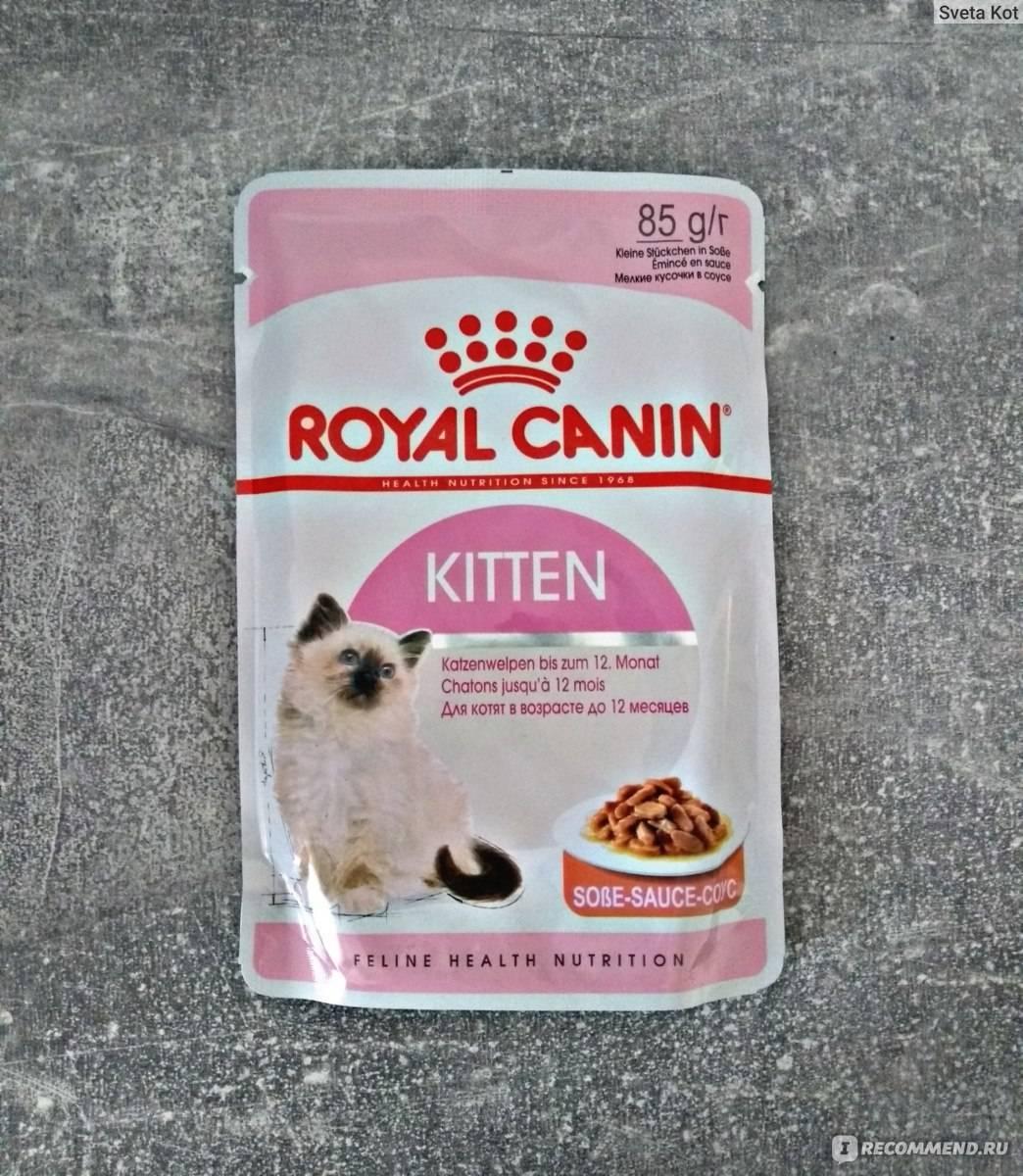 Корм для кошек роял канин (royal canin): обзор, виды, состав, отзывы