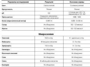 Белок, глюкоза, билирубин и другие показатели общего анализа мочи у кошки: норма и расшифровка