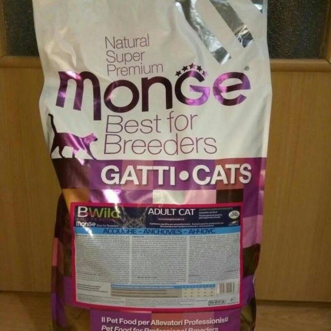 Корм монж (monge) для кошек: отзывы и обзор состава   сайт «мурло»