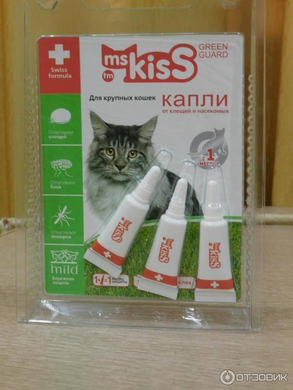 Капли от блох для кошек, какие выбрать, как действуют, куда капать