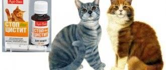 «катозал» ветеринарный: инструкция по применению