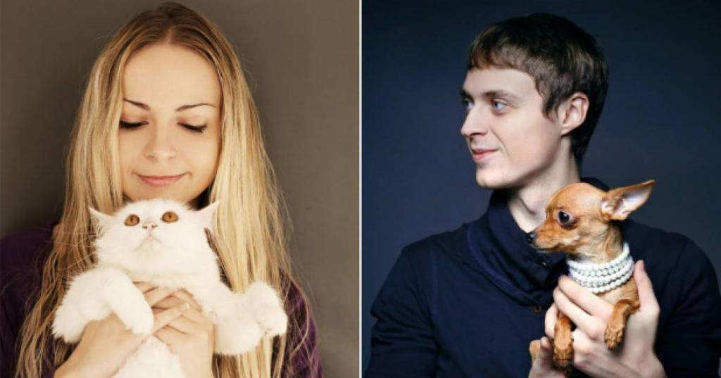 Кошки против собак: какого питомца лучше завести?