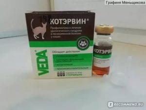 Папаверин для кошек инструкция по применению    папаверин для кошек дозировка - терапевтonline