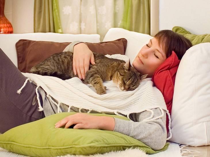 Как называется человек, который любит животных? почему люди любят животных: научное мнение - psychbook.ru