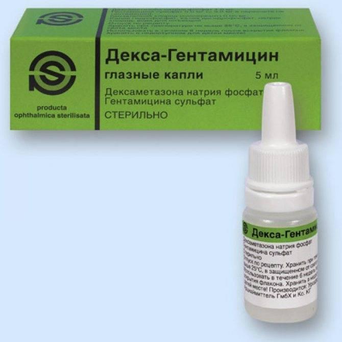Гентамицин 4 инструкция по применению в ветеринарии. ветеринарный препарат
