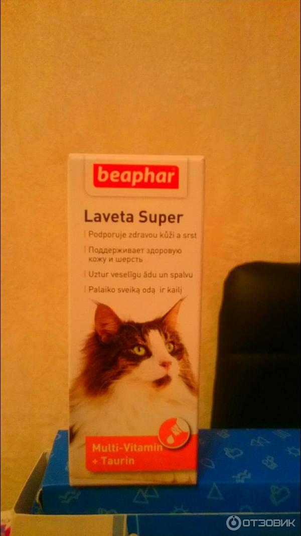 Линька у кошек — что это, как бороться (витамины, капли, шампунь)