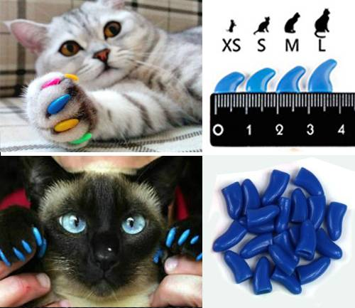 Накладки на когти для кошек: все факты и мифы, о которых нужно знать
