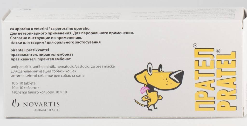 Инструкция по применению Пратела для кошек