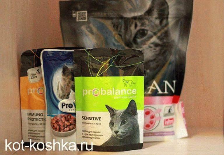 Беззерновой сухой корм для собак и кошек: польза и вред