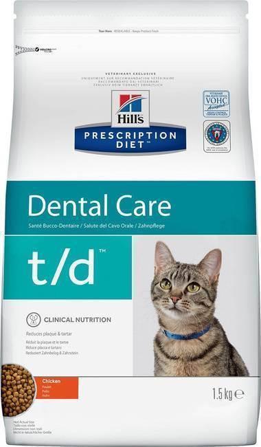 Как почистить зубы кошке в домашних условиях?