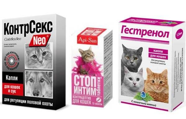 Ковертал для кошек: описание, показания и противопоказания, инструкция по применению, аналоги, отзывы