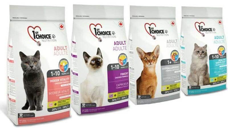 Как выбрать корм для кошек: советы экспертов