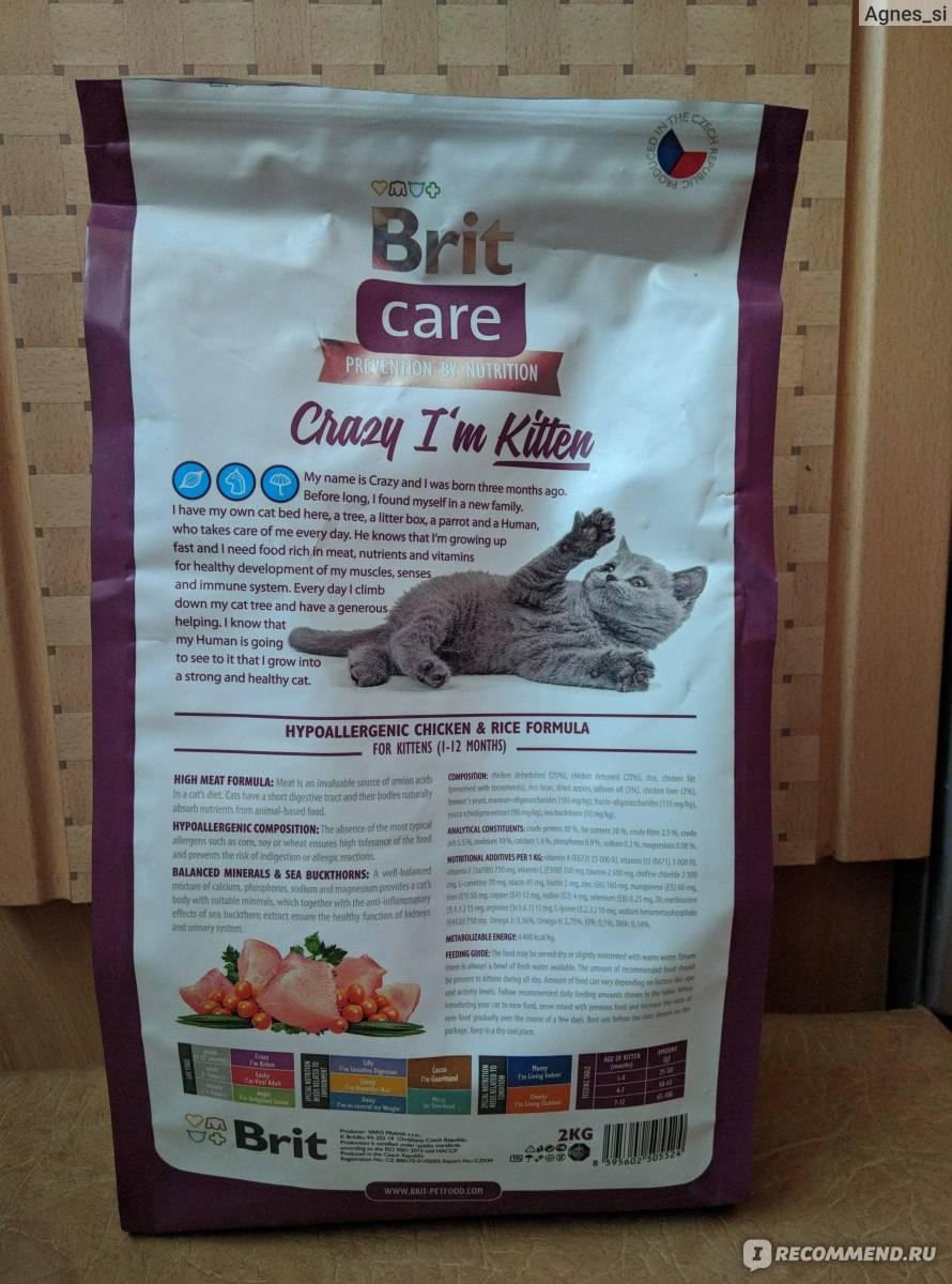 Корм брит для кошек: особенности состава, виды продукции brit kea премиум класса для котов, критерии выбора