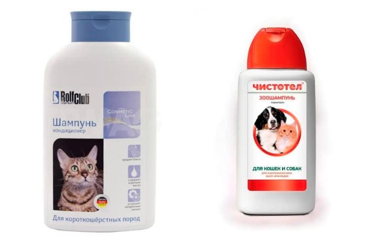 Особенности выбора и использования шампуней от блох для кошек и котят
