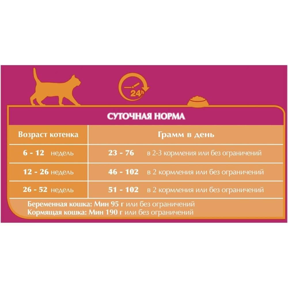 Корм для кошек purina («пурина»): его виды, классы и ассортимент, отличительные особенности, преимущества и недостатки