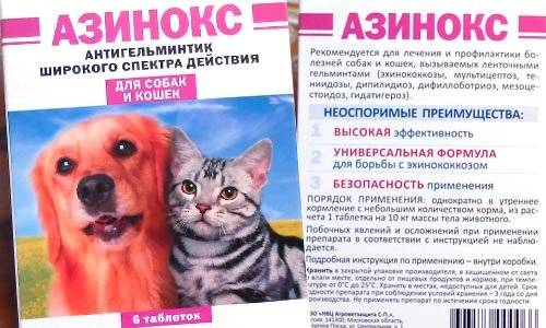 Инструкция по применению препарата Азинокс для кошек