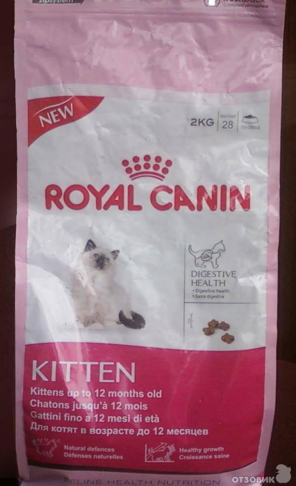 Корм для кошек royal canin: обзор, отзывы и цены корм для кошек royal canin: обзор, отзывы и цены