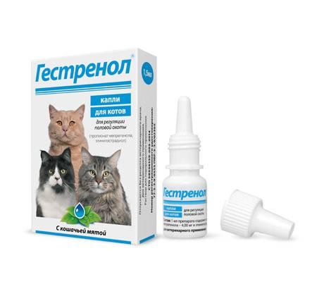 «гестренол» для кошек, инструкция
