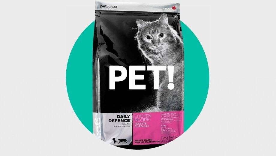 Как правильно кормить кошку влажным кормом?