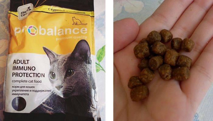 Корм для кошек probalance cat sterilized влажный