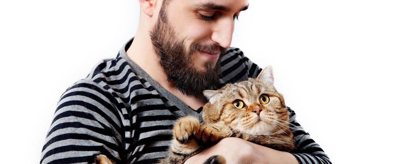 Здоровая кошка — здоровая семья