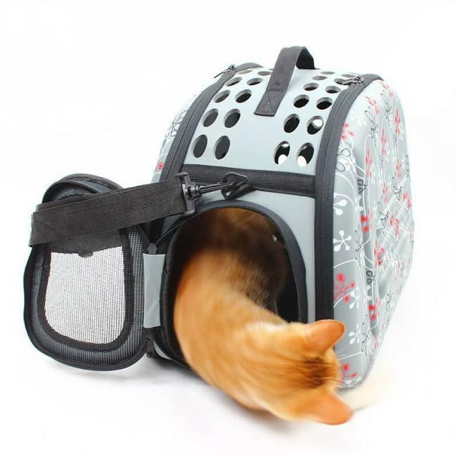 Переноска для кошки: какие они бывают и как сделать правильный выбор