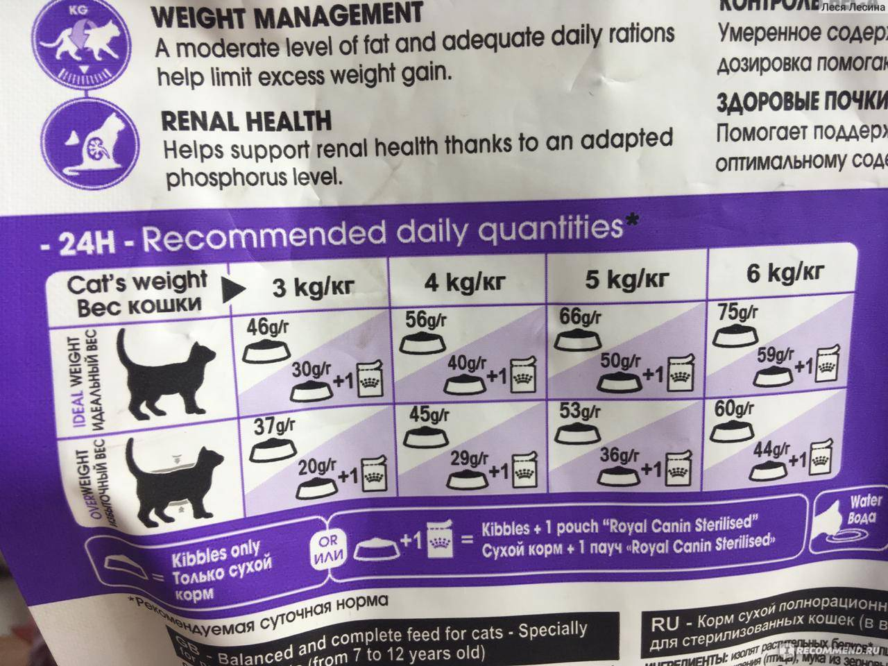 Сколько сухого корма давать кошке в день