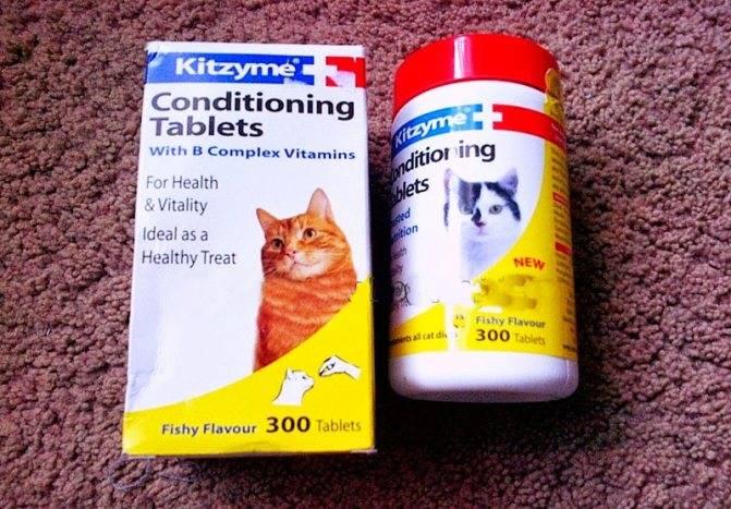 Витамины от выпадения шерсти кошек