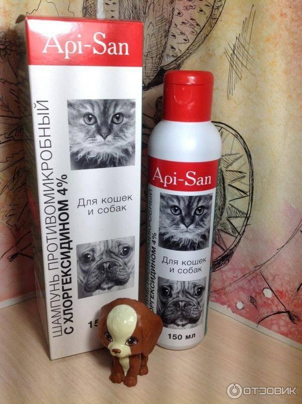 Противомикробный шампунь с хлоргексидином для кошек