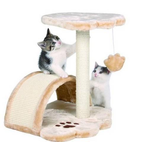 Как приучить кошку к домику и когтеточке быстро