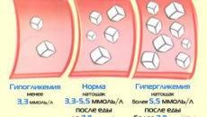 Глюкоза у кошек: норма, повышенные и пониженные показатели, причины, симптомы