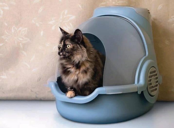Биотуалет для кошек описание: лучшие закрытые туалеты для кошек
