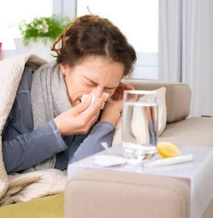 Может ли кошка заразиться гриппом от человека, почему они не болеют этим вирусом: симптомы и лечение простуды