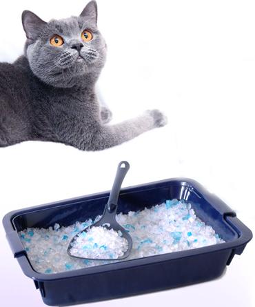 Как сделать кошачий наполнитель