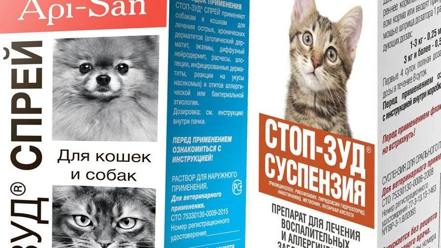 Стоп зуд для кошек: отзывы, инструкция по применению, противопоказания