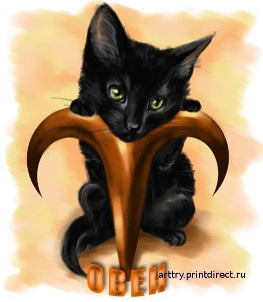 Гороскоп кошек-тельцов и собак-тельцов