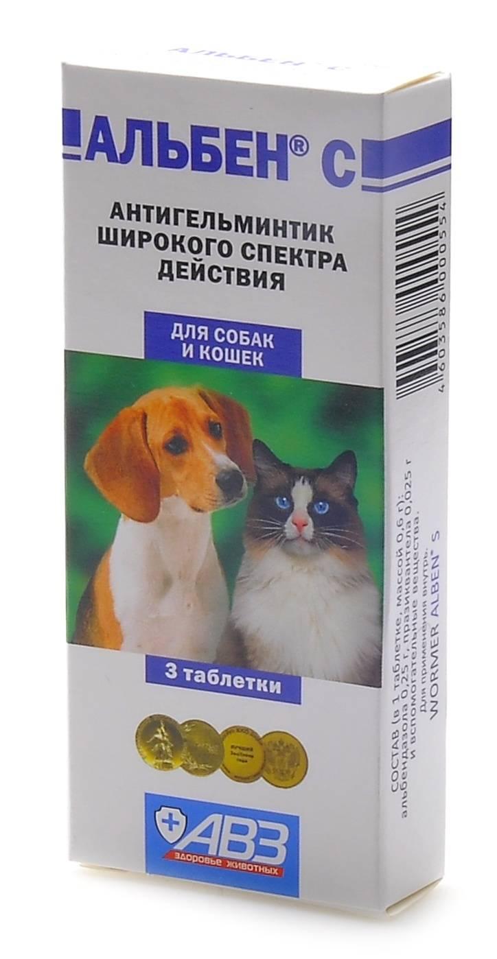 Альбен для кошек: инструкция по применению, состав, дозировка и цена