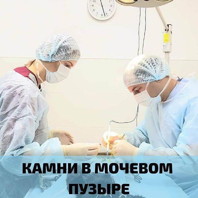 Мочекаменная болезнь | передача о самом главном смотреть онлайн канал россия