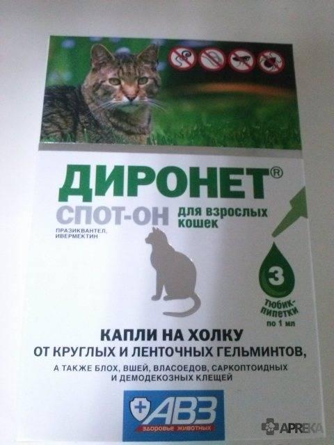 Диронет спот–он для кошек: инструкция по применению