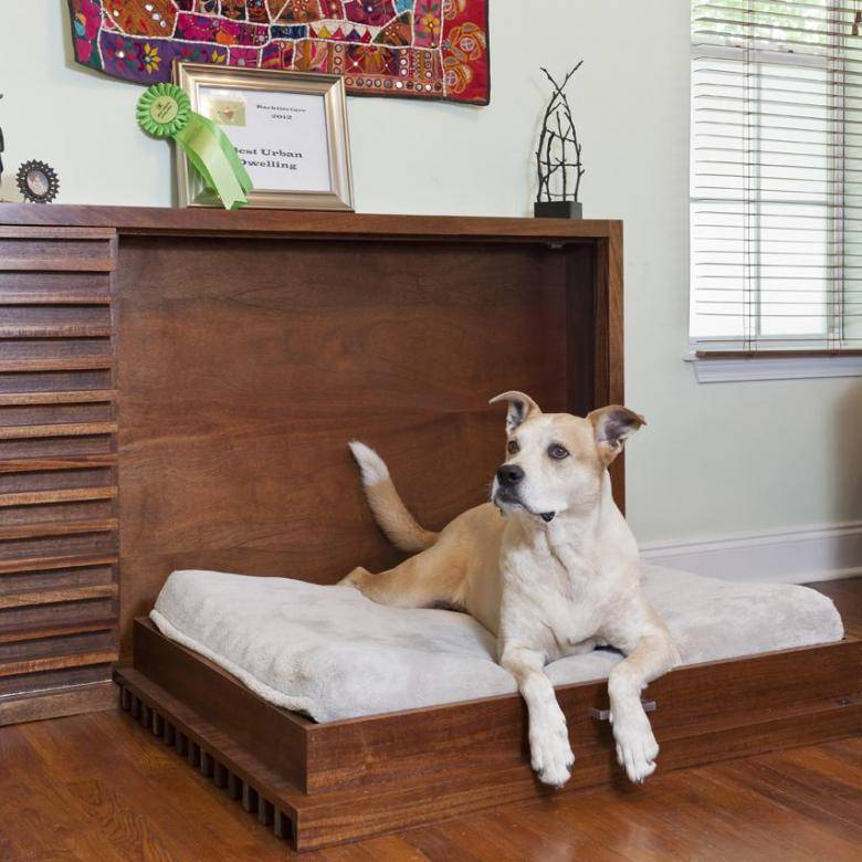 Что нужно для собаки в квартире: список вещей и аксессуаров
