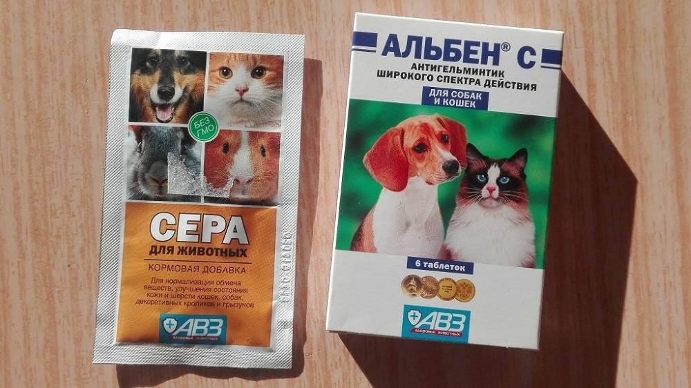 Альбен для лошадей дозы. инструкция по применению альбена в ветеринарии