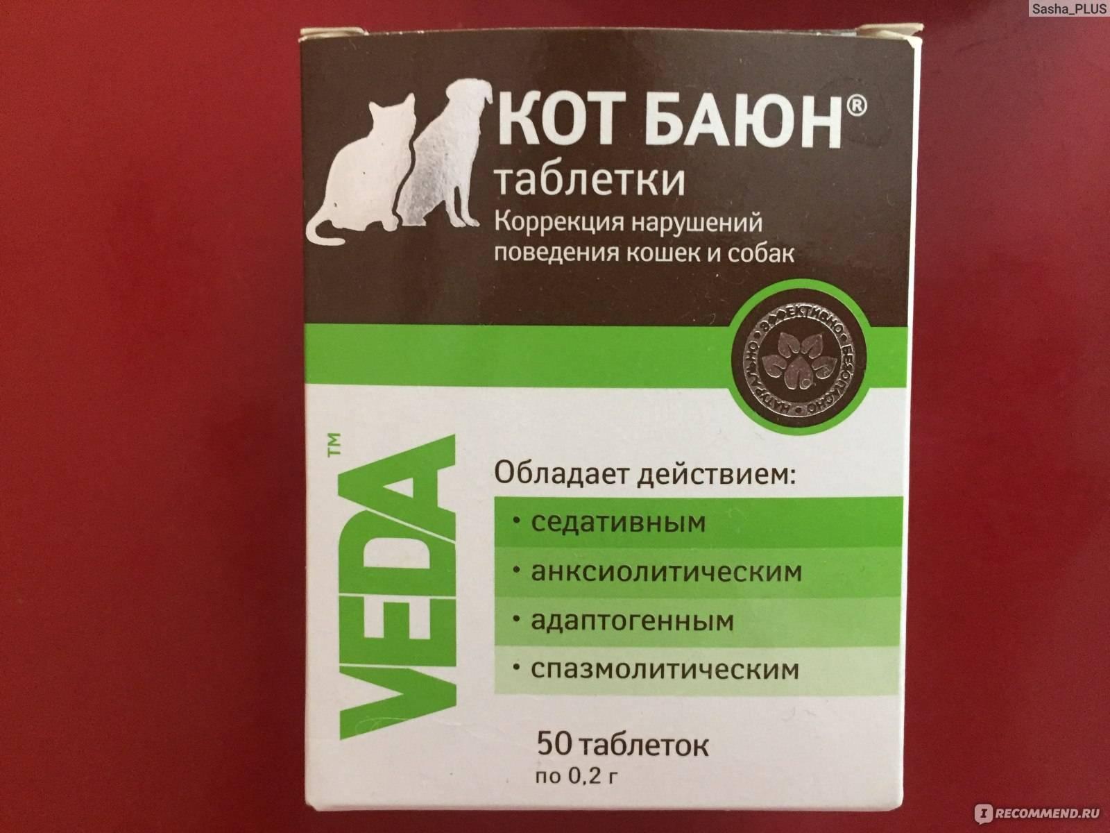 Препараты от загулов для котов: обзор капель и таблеток