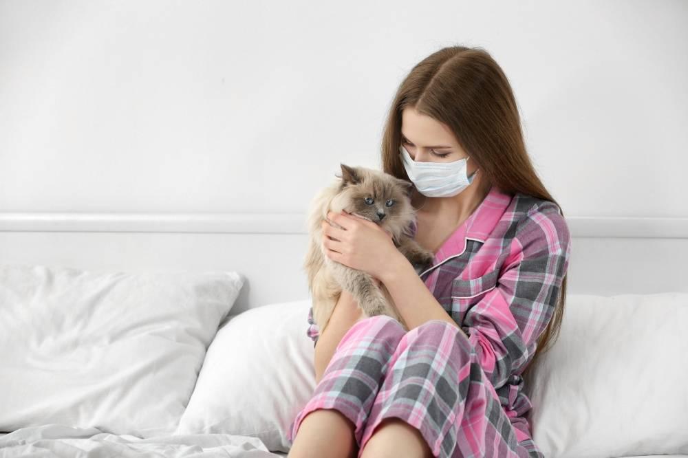 Аллергия на шерсть животных: причины и признаки