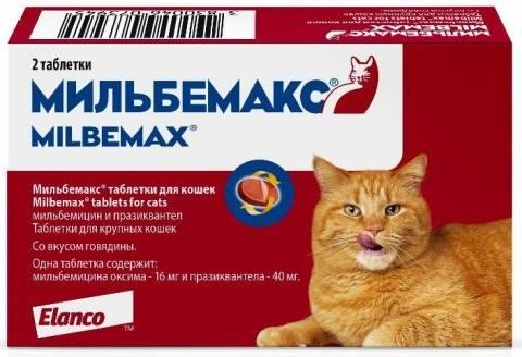 Мильбемакс для кошек – назначение, инструкция, отзывы