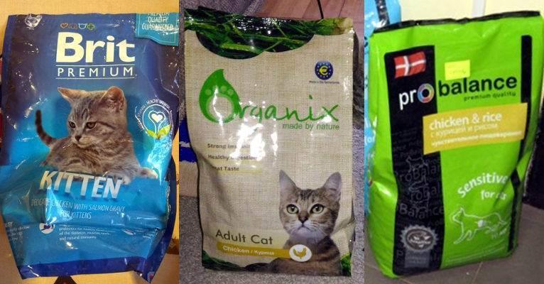 Сухой корм для кошек рейтинг: какой лучше выбрать — lapy-i-hvost