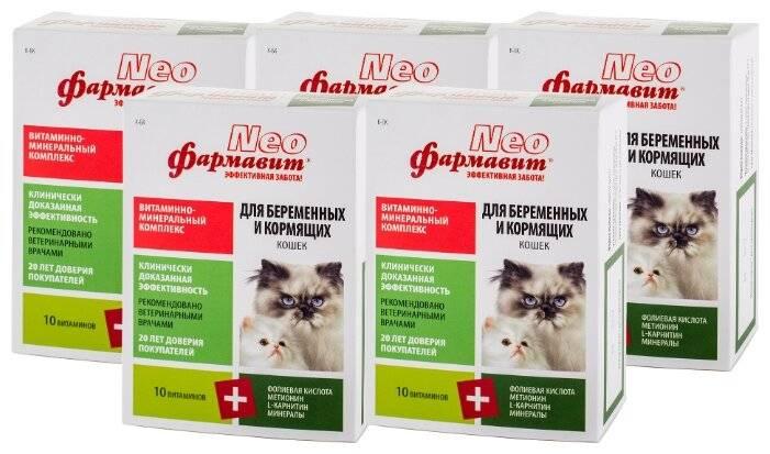 Витамины для кошек во время беременности